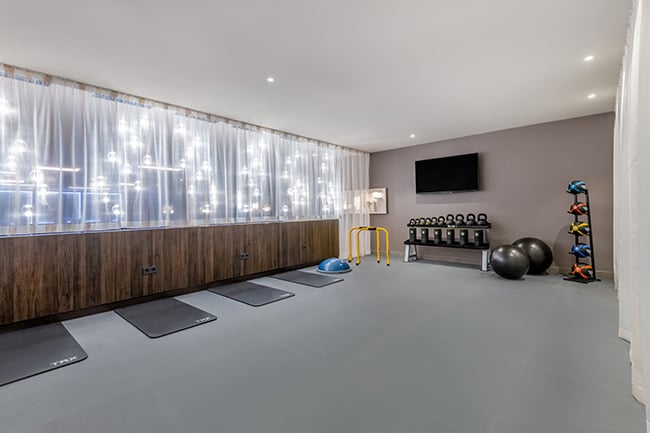 mh_vieat_health-club_workout-area-small.jpg